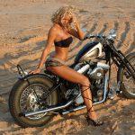 Desert Blonde